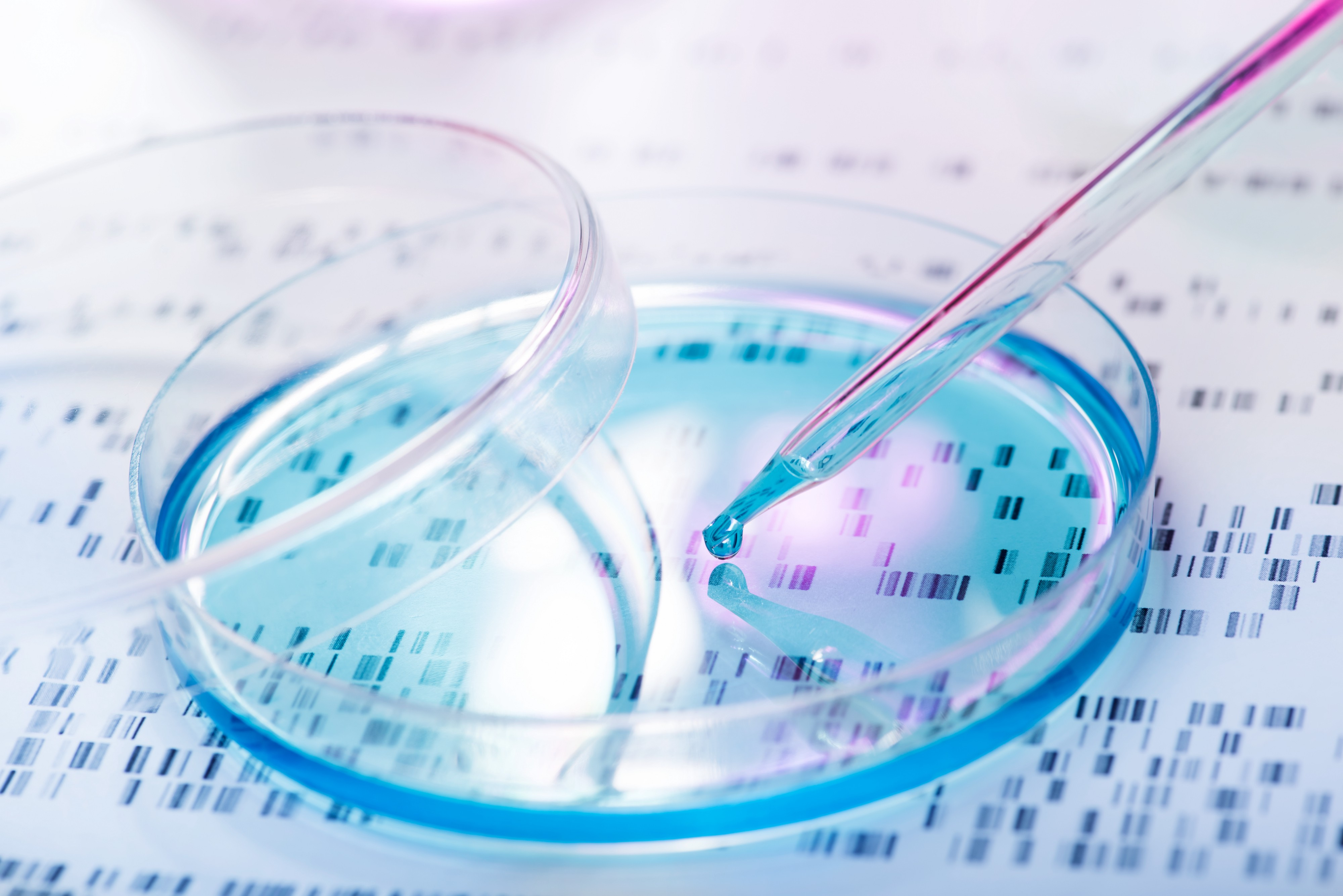 genetica forense_high investigazioni penali